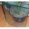 供应19mm浮法玻璃原片