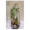 供应微景观玻璃花房 创意玻璃花房 几何玻璃花房 立体玻璃花房