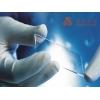 生物芯片 生物晶片 基因表达的筛选