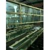 陕西生产销售超大版钢化夹胶玻璃
